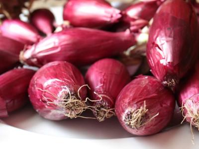 The Secret Of La Cucina Calabrese Cst Tropea